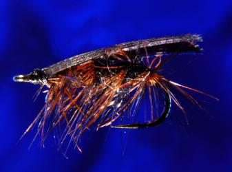 Early Black Caddis Early Black Caddis-16