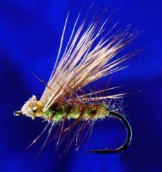 Hair W. Caddis Green-16 Hair W. Caddis Green-16