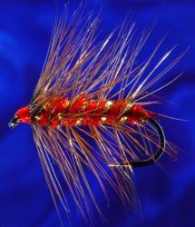 Red Palmer-8 Red Palmer-8