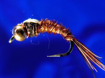 Bead Head Pheasant T. (copper bead)-16 B.H. Pheasant Tail -16