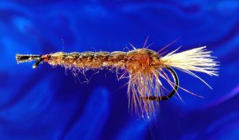 Crayfish-8 Crayfish-8
