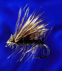 Hair W. Caddis Black-14 Hair W. Caddis Black-14