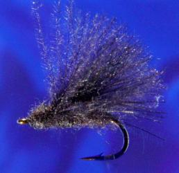 Black CDC Caddis-16 Black CDC Caddis-16