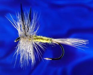 Blue W. Olive Blue W. Olive-12
