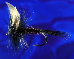 Black Gnat Black Gnat-12
